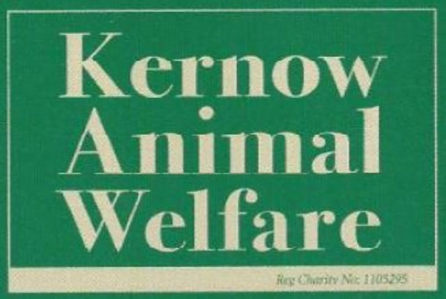 Kernow Animal Welfare Main Image