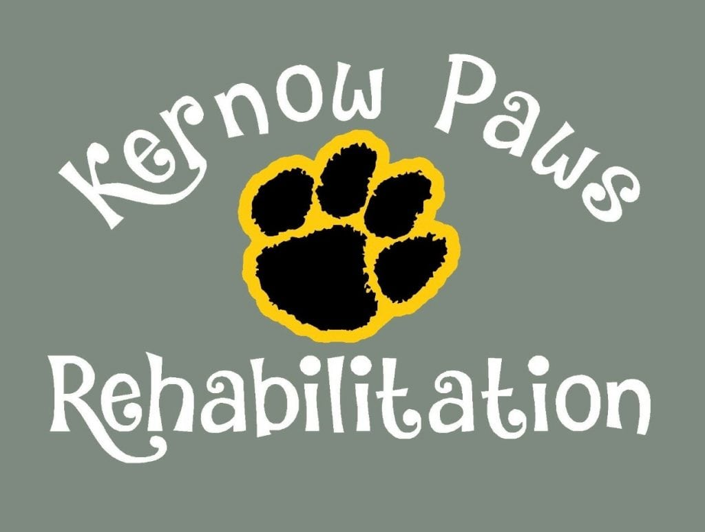 Kernow Paws Rehabilitation Logo